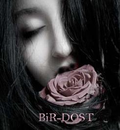 BiR-DOST